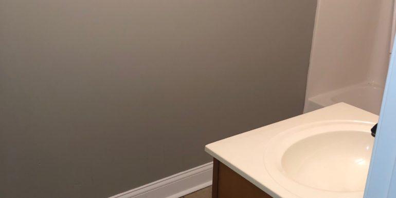 Shot Hunt basement bath