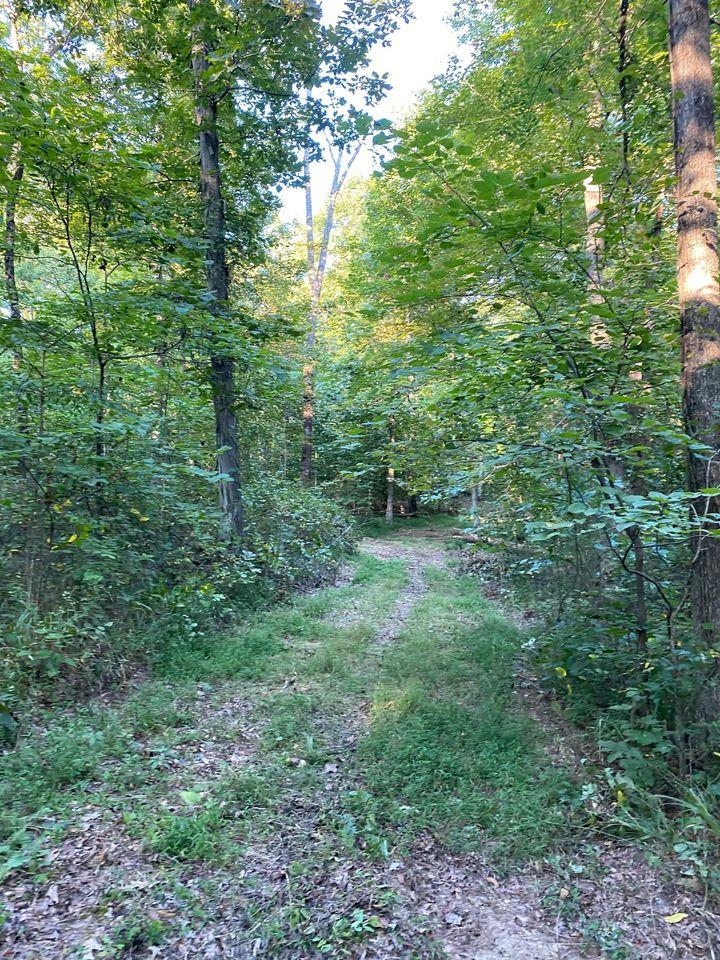 1637 Cedar Flats Road, Battletown, KY 40104