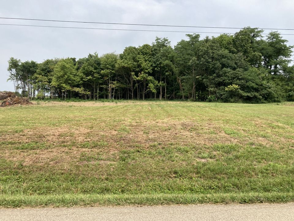 Charlie Pile Road, Lot's 3&4, Guston Ky 40142